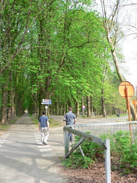 2007holandsko